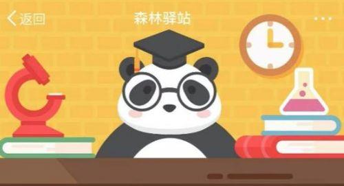 森林驿站4月16日答案 下面哪个关于熊猫的描述是正确的