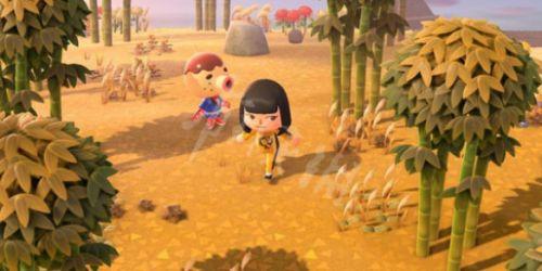动物森友会蘑菇季开始时间 动物森友会蘑菇季玩法一览